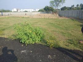 Agricultural Land in Chennai | Agricultural Land for Sale in