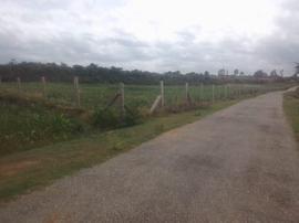 Agricultural Land in Kolar   Agricultural Land for Sale in Kolar